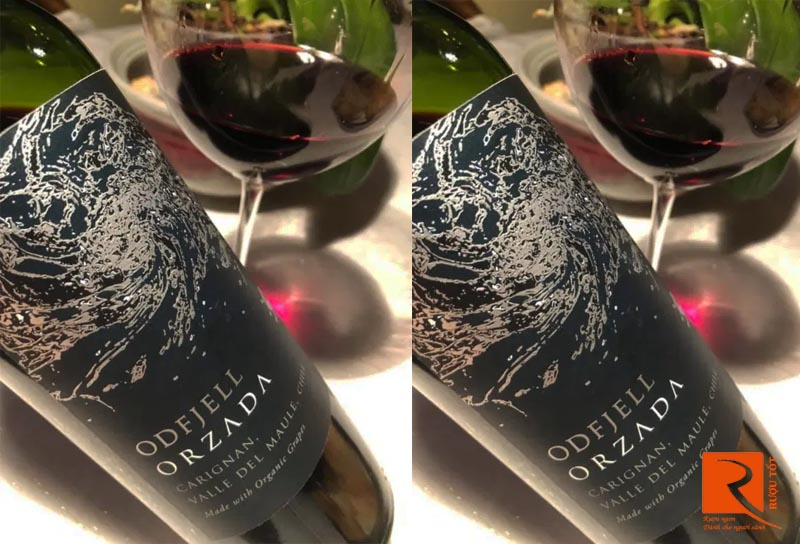Rượu vang Chile Odfjell Orzada Carignan