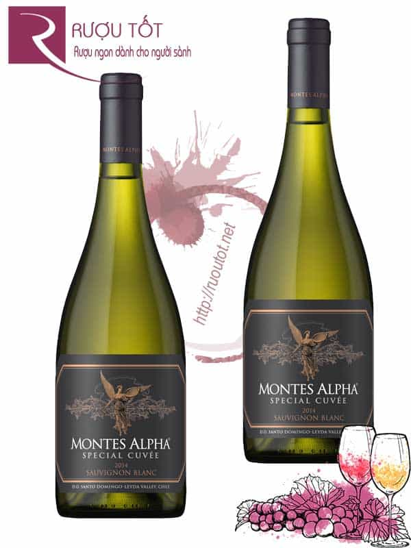 Vang Chile Montes Alpha Special Cuvee Sauvignon Blanc