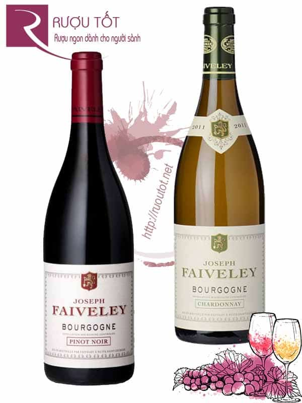 Rượu vang Pháp Faiveley Bourgogne (Red White)
