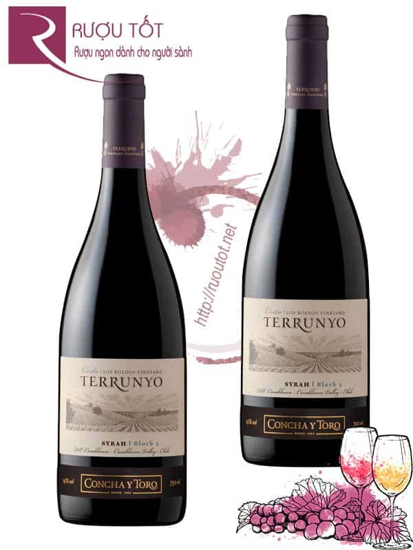 Vang Chile Terrunyo Syrah Block 3 Discontinued
