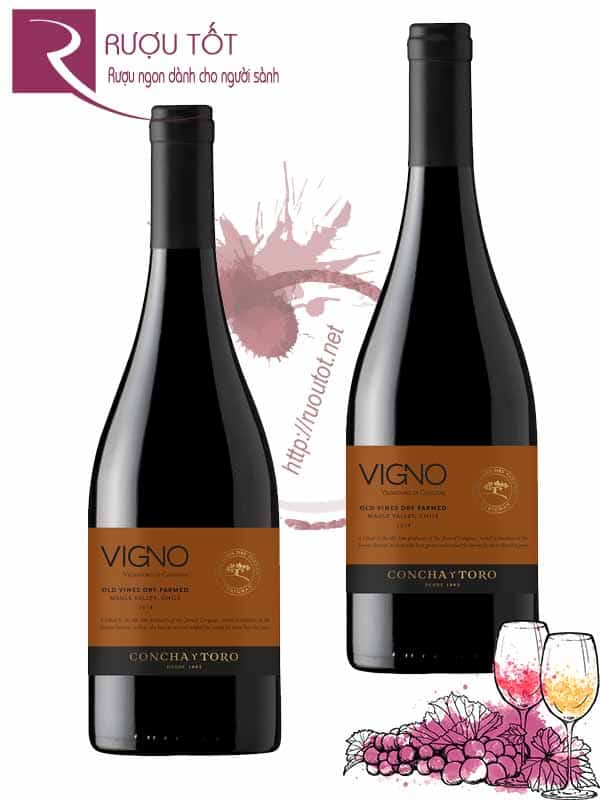 Vang Chile Concha Y Toro Vigno Old Vines