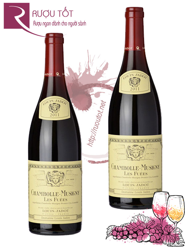 Vang Pháp Chambolle Musigny Les Fuees Louis Jadot 2013