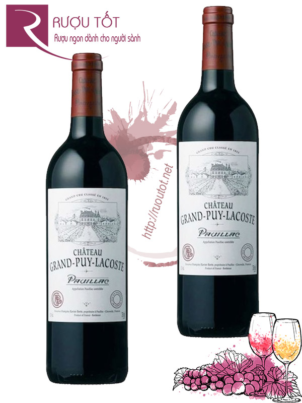 Vang Pháp Chateau Grand Puy Lacoste Pauillac 2008 Thượng hạng