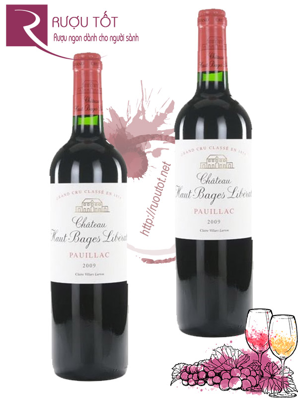 Vang Pháp Chateau Haut Bages Liberal Pauillac Cao cấp