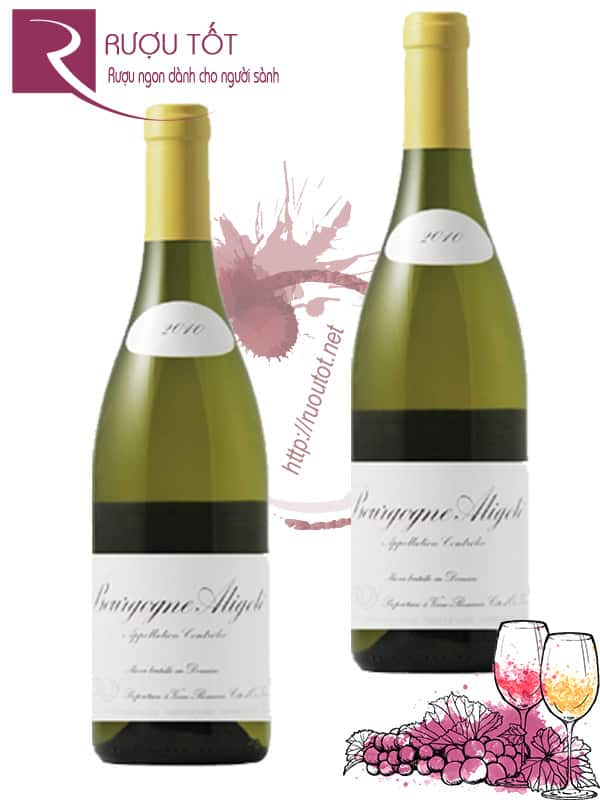 Vang Pháp Bourgogne Aligote Domaine Leroy Hảo hạng