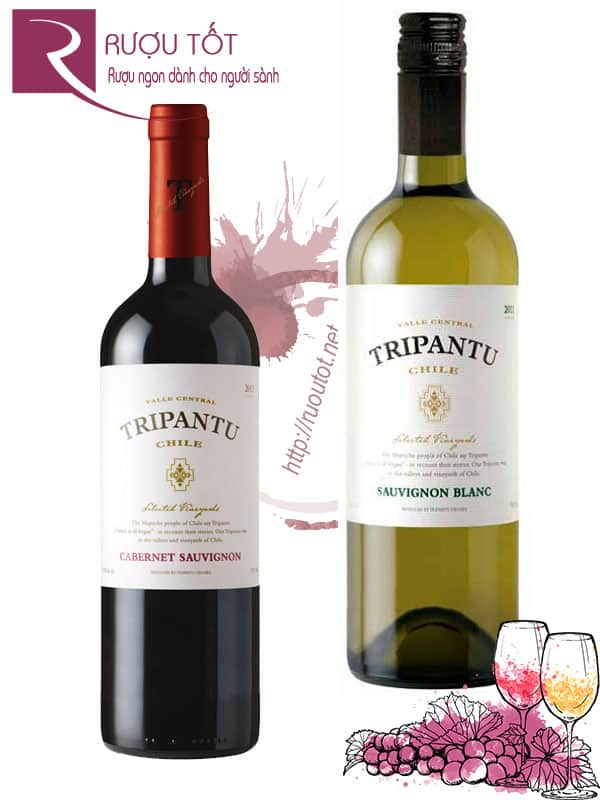 Rượu Vang Chile Tripantu 13,5% (Red – White)