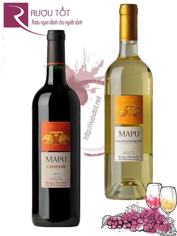 Vang Chile Mapu Baron Philippe de Rothschild (Red - White)