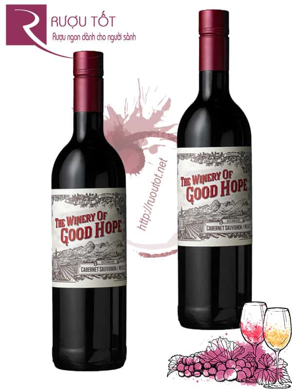 Vang Nam Phi The Winery of Good Hope OceanSide