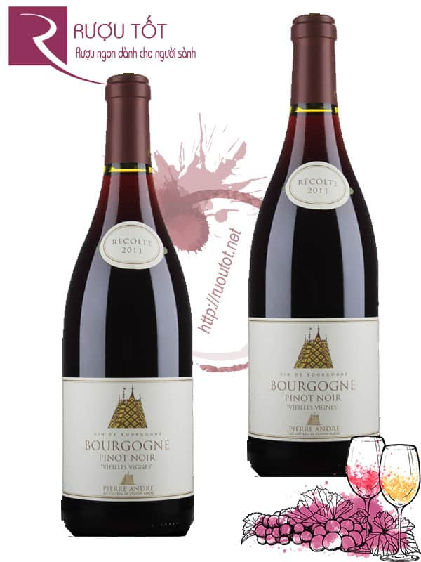 Vang Pháp Bourgogne Pinot Noir Pierre Andre Thượng hạng