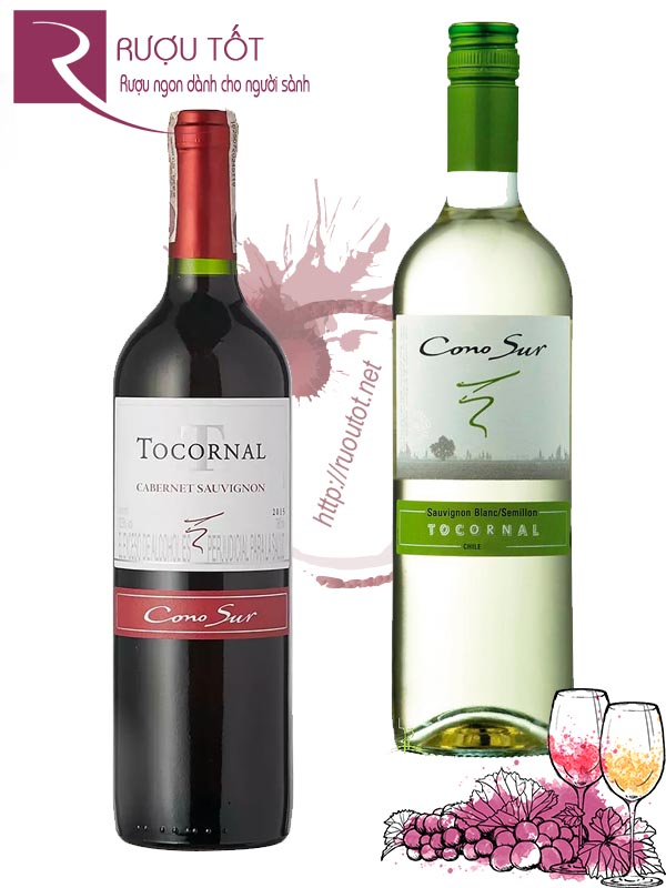 Vang Chile Tocornal Cono Sur (Red – White)