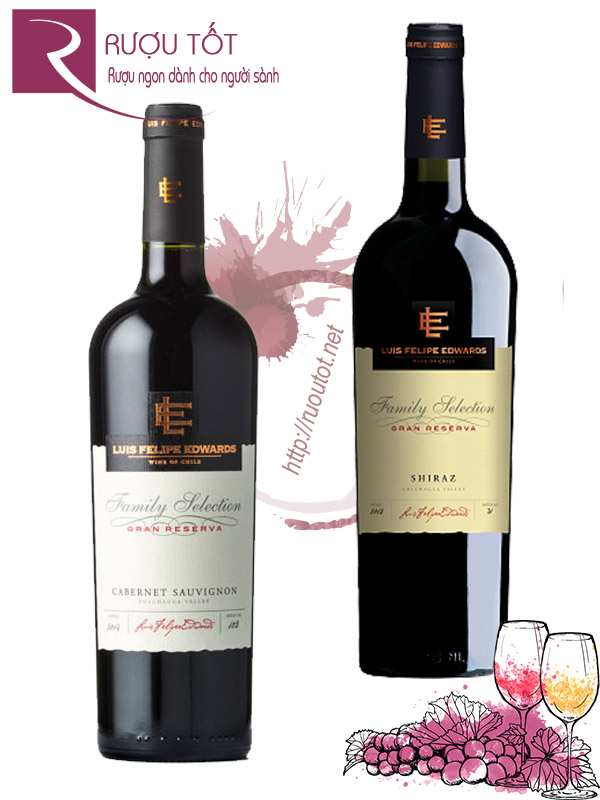 Vang Chile Family Selection Gran Reserva Luis Felipe