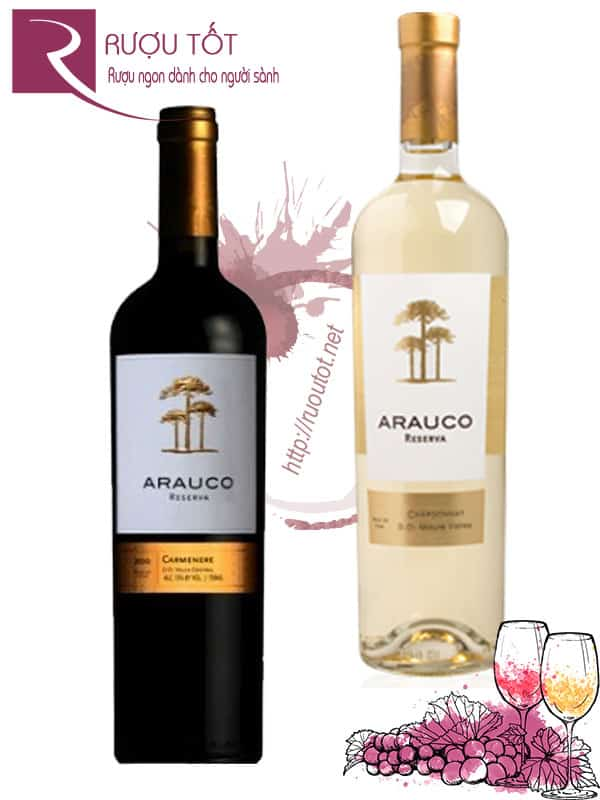Vang Chile Arauco Reserva Central Valley Red - White Cao cấp