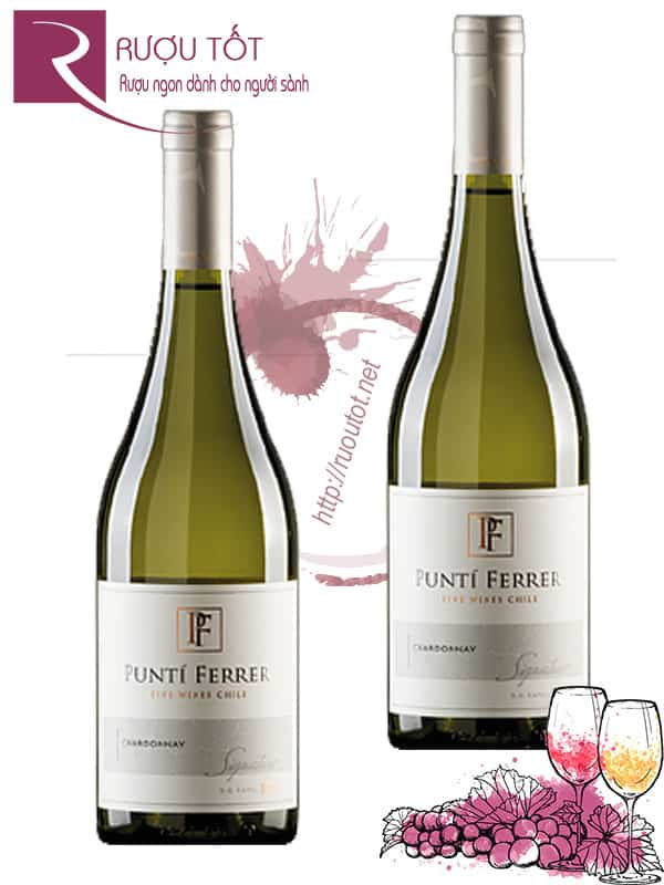 Vang Chile Punti Ferrer Classic Chardonnay