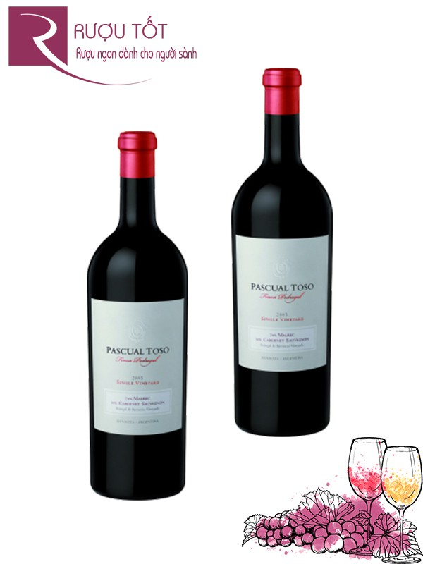 Rượu vang Pascual Toso Single Vineyards Finca Pedregal Hảo hạng