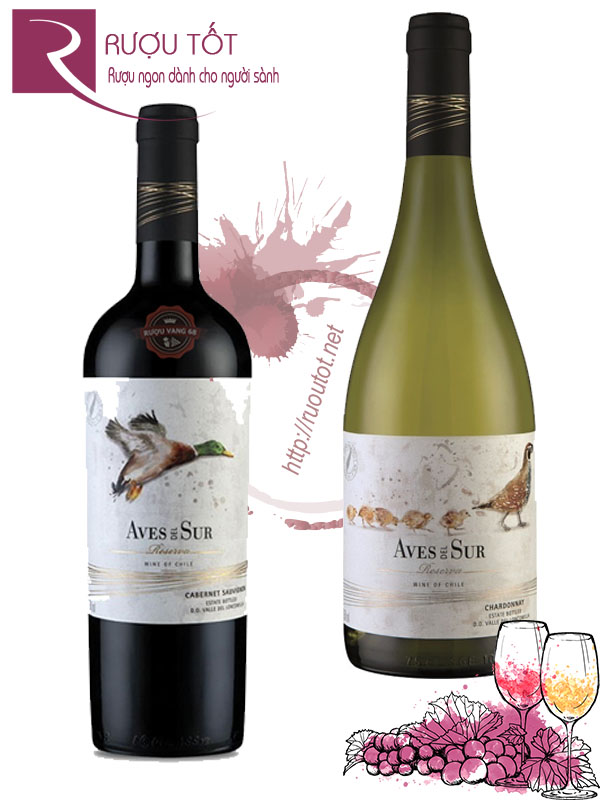 Vang Chile Aves del Sur Reserva (Red - White)