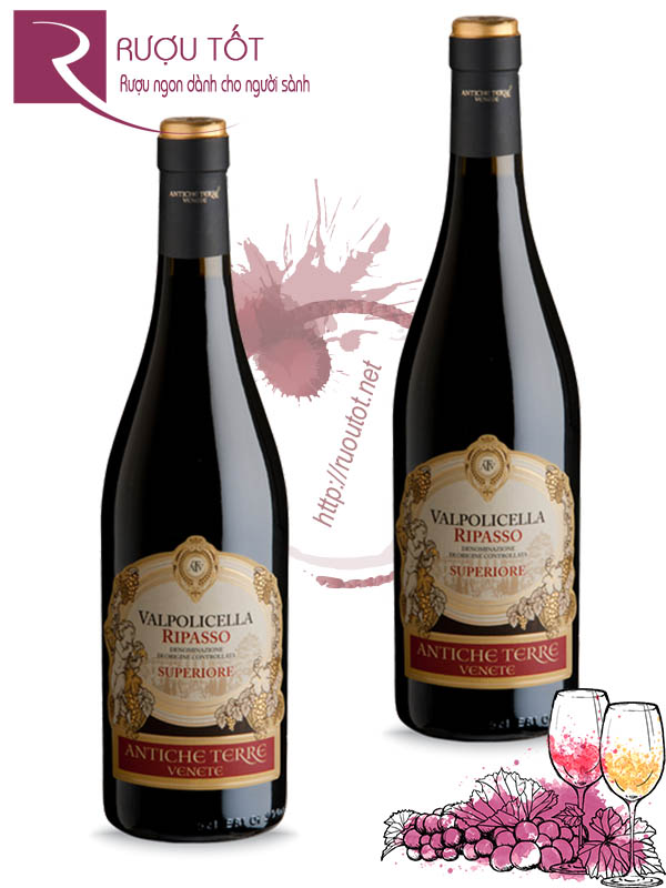 Vang Ý Valpolicella Ripasso Superiore DOC Thượng hạng