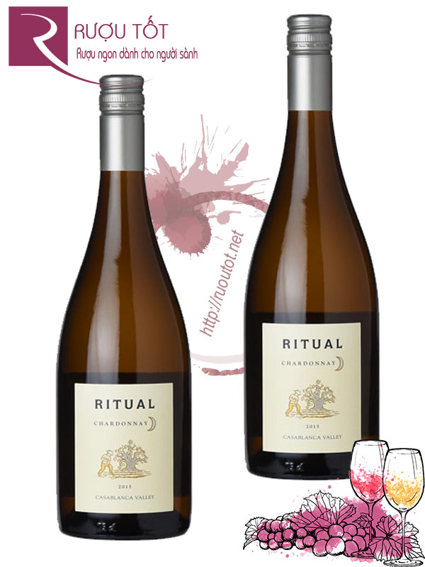 Vang Chile Ritual Chardonnay Casablanca Valley