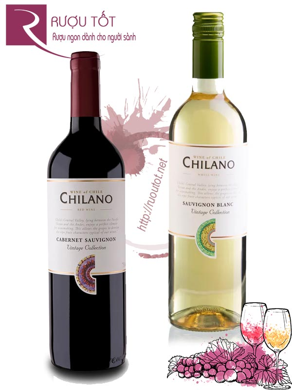 Vang ChiLe ChiLano (Red – White) Cao cấp