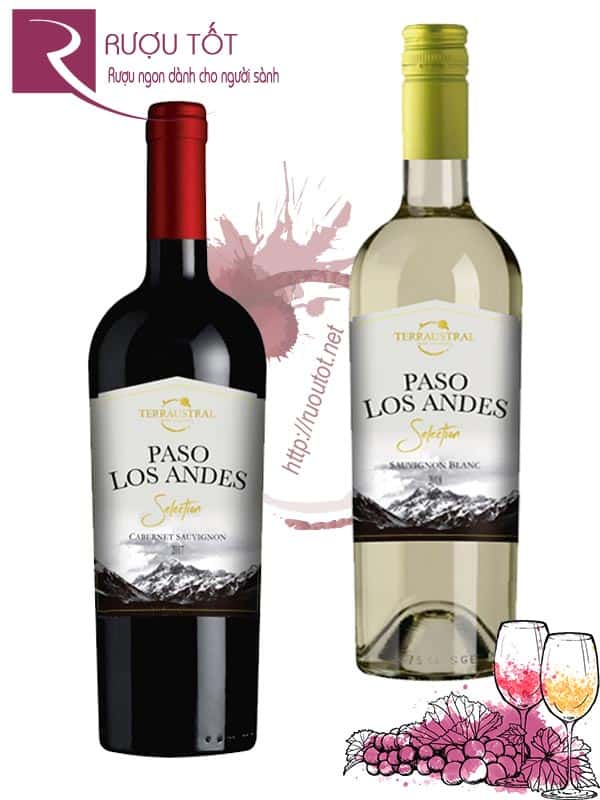 Vang Chile Paso Los Andes Selection (Red – White)