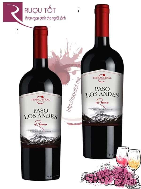 Vang Chile Paso Los Andes Reserva Red 14 độ