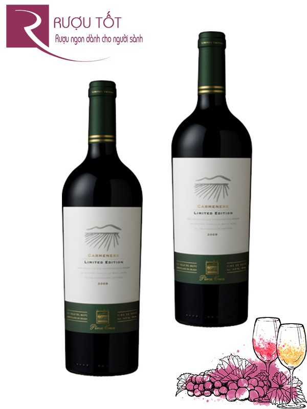 Vang Chile Perez Cruz Carmenere Limited Edition