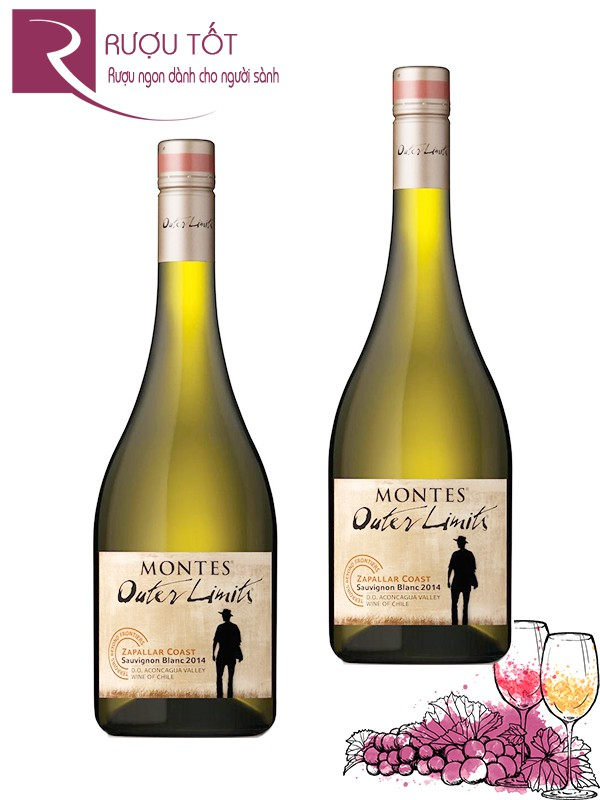 Vang Chile Montes Outer Limits Sauvignon Blanc vang trắng cao cấp