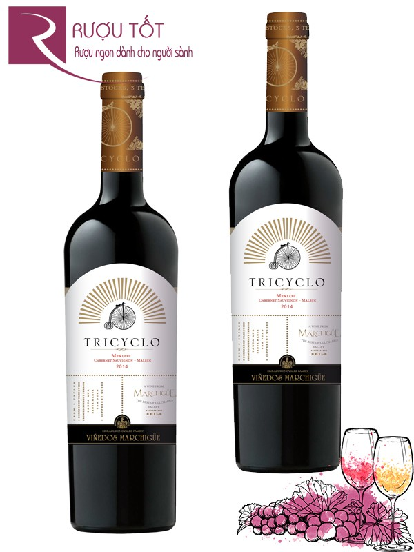 Vang Chile Tricyclo Marchigue Colchagua Valley Cao cấp