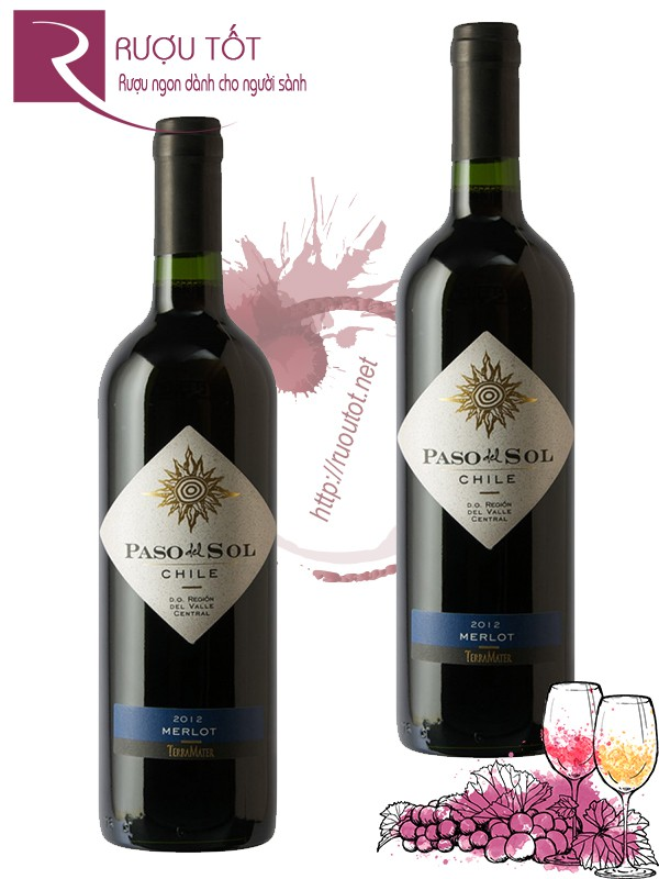 Vang Chile Paso Del Sol Terramater Merlot Thượng hạng