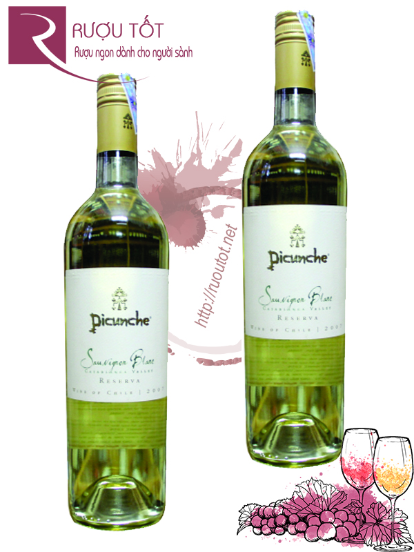 Vang Chile Picunche Sauvignon Blanc Reserve Thượng hạng