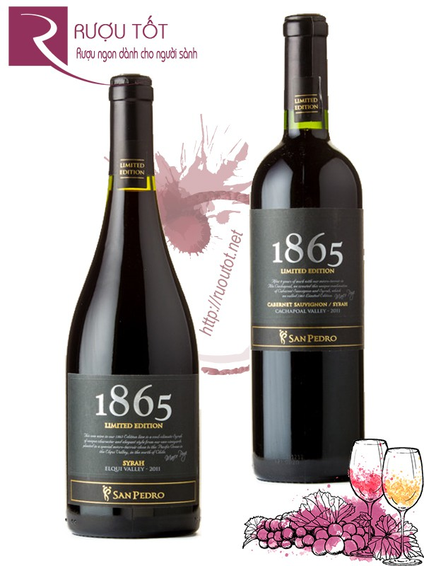 Vang Chile 1865 Limited Edition Blend/Syrah