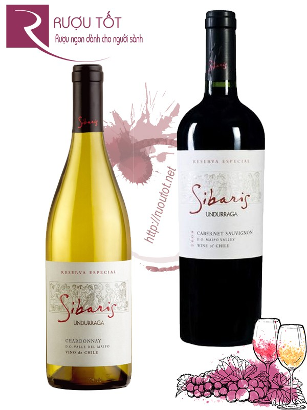 Vang Chile Sibaris Undurraga Gran Reserva (Red-White)