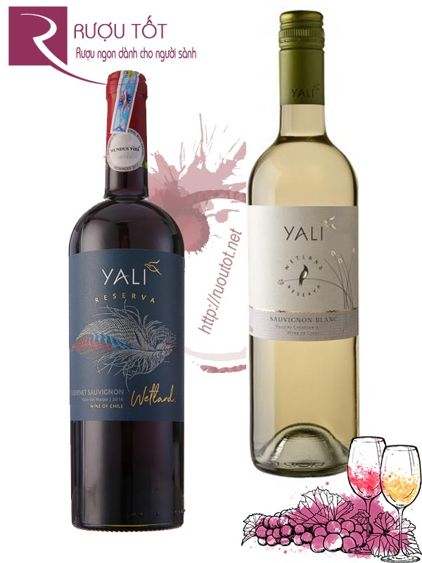 Vang Chile Yali Reserva (red-white) Cao Cấp