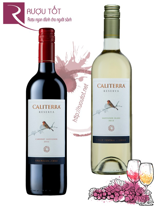 Vang Chile Caliterra Reserva (red - white)