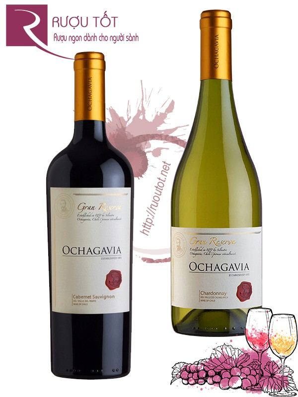 Vang Chile Ochagavia Gran Reserva (red - white)