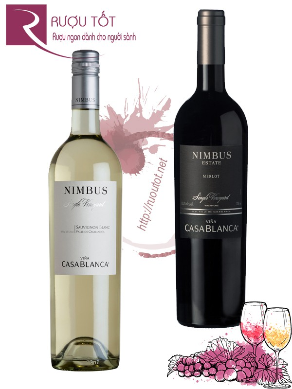 Vang Chile Casablanca Nimbus Single Vineyard (red - white)