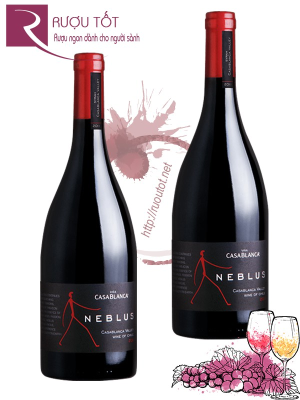 Vang Chile Neblus Casablanca Icon Wine