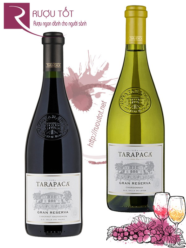 Vang Chile Tarapaca Gran Reserva (red – white)