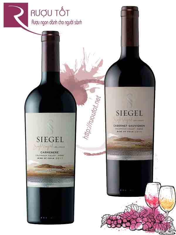 Vang Chile Siegel Single Vineyard Thượng hạng