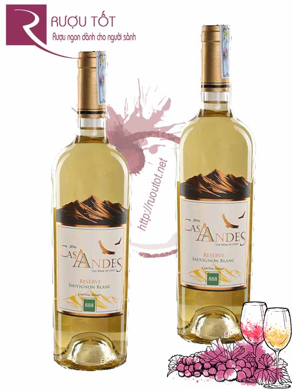 Vang Chile Cas Andes Reserve Sauvignon Blanc
