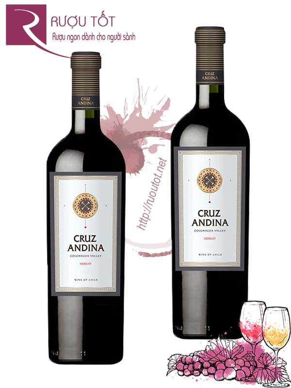 Vang Chile Cruz Andina Merlot 750ml