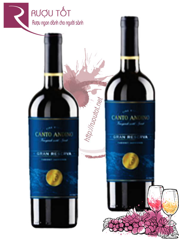 Vang Chile Canto Andino Grand Reserve Rapel Valley Cao cấp