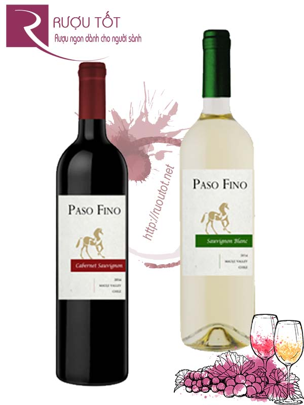 Vang Chile Paso Fino Central Valley Red - White Hảo hạng