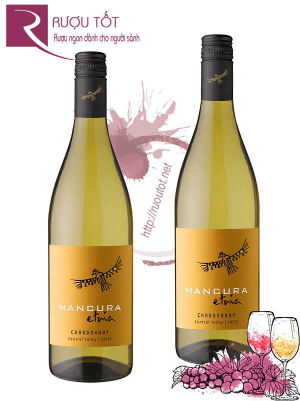 Vang Chile Mancura Etnia Chardonnay Valle Central Cao cấp