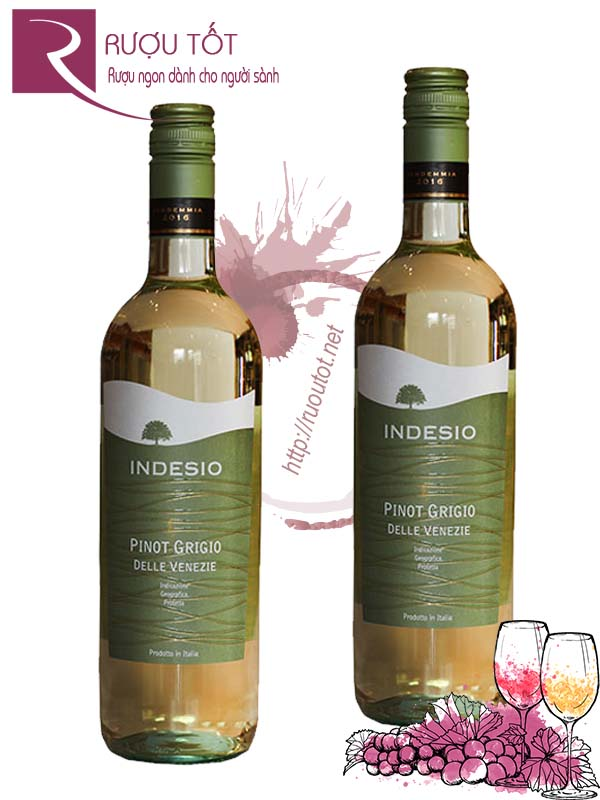 Vang Ý Indesio Pinot Grigio