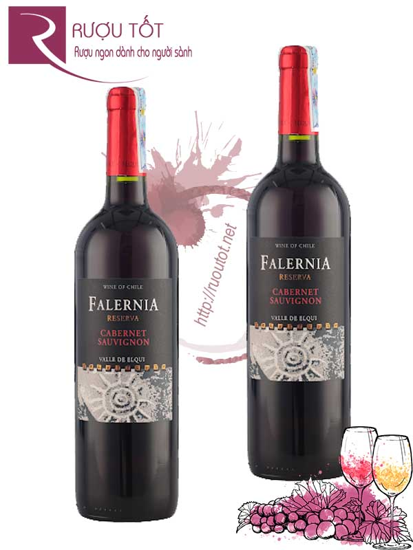 Vang Chile Falernia Cabernet Sauvignon Reserva Thượng hạng
