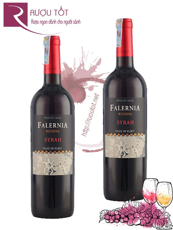 Vang Chile Falernia Syrah Reserva Elqui Valley Thượng hạng