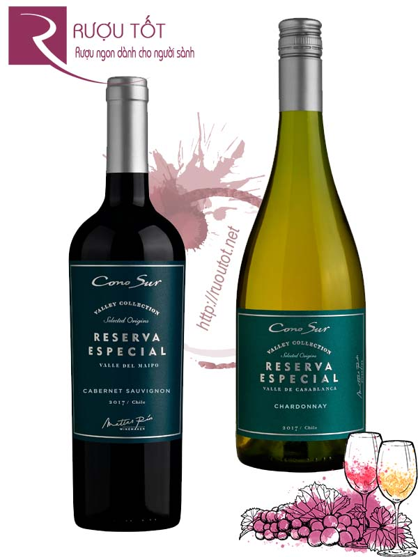 Vang Chile Cono Sur Reserva Especial (Red – White)