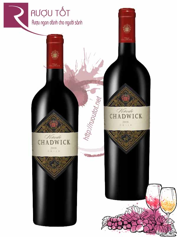 Vang Chile Vinedo Chadwick